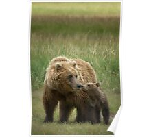 Mother And Cub Poster