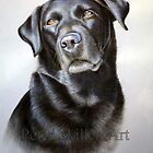 Black Lab by Peter Skillen