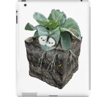 Large white on a cabbage ground cube iPad Case/Skin