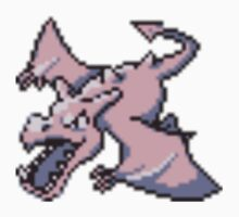 Aerodactyl evolution  by kyokenbyo