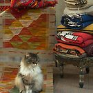 Cat on Carpet Essaouira by Louise Fahy