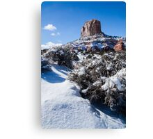 Winter in  the Desert Canvas Print