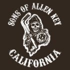 Sons Of Allen Key 2 by trev4000