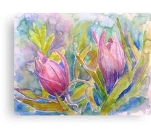 unknown pink flowers Canvas Print