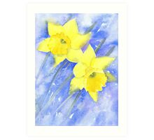 Daffies in the wind on a cold March day Art Print