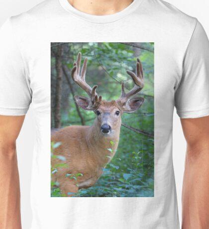 White-tailed deer Buck Unisex T-Shirt