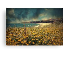 Ode to Melancholy Canvas Print