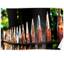 Vibrant old iron railings Poster