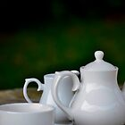 White tea set in the garden by wittieb