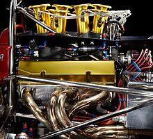 1974 Lola T332  F5000 Race Car V8 5 litre Engine by Frank Kletschkus