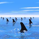 Swimming with sharks by Norma Cornes