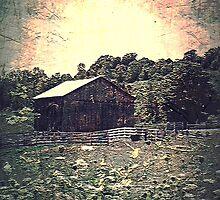 Meadow Of Memories by MissDawnM