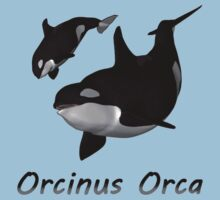 Orca Mother and Calf by Caroline Smalley