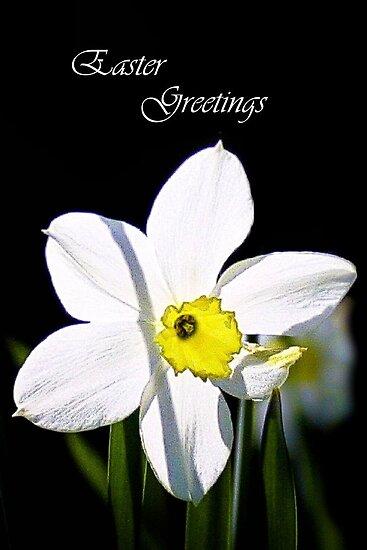 Easter Greetings by missmoneypenny