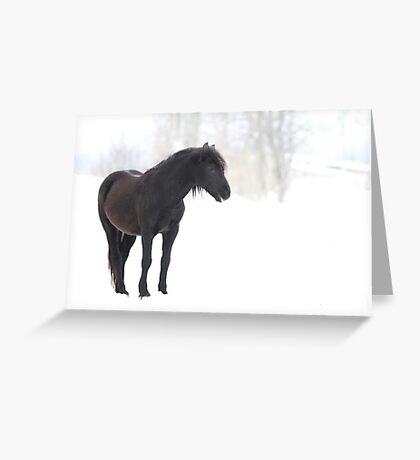 Sleep, perchance to Dream - Horse Greeting Card