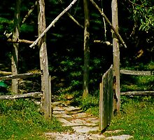 Gate at a farm in NC by inge1967