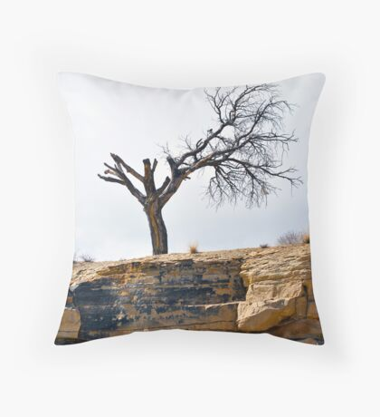 Garbage Bag in Gallup Throw Pillow