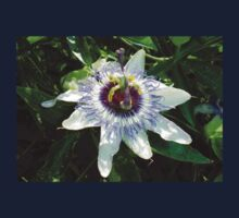 Beautiful Passion Flower With Garden Background Baby Tee
