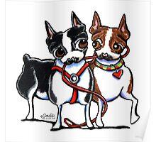Boston Terrier Walking Buddies Poster
