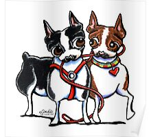Boston Terrier Walking Buddies Poster