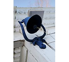 Blue Bull Bell & Ball Photographic Print