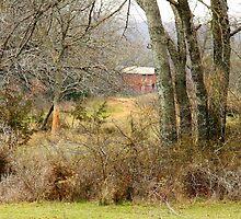 Old Barn Landscape by Mickey Harkins