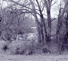 Old Barn Landscape - Monochrome by Mickey Harkins