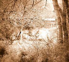 Old Barn Sepia by Mickey Harkins