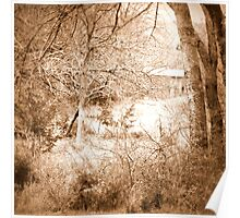 Old Barn Sepia Poster