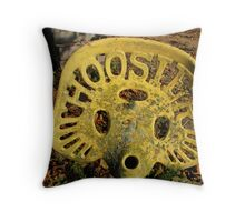 Hoosier Daddy Throw Pillow
