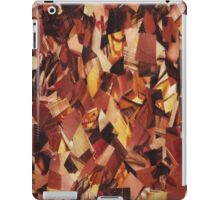 Warmth iPad Case/Skin