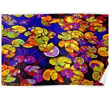 Waterlilies Deeped In Colour... Poster