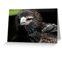Am I Looking Scary Yet? Greeting Card