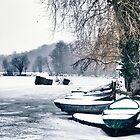 Frozen Boats by Oliver Winter