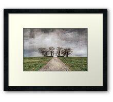 Textured Trees Framed Print