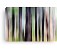 Colour of the Forest Canvas Print