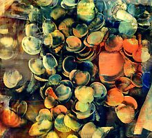Shells. and shells. and shells.  by vanLinho