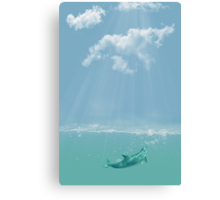 Dolphin in The Water Canvas Print