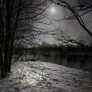 THE SNOW MOON by leonie7