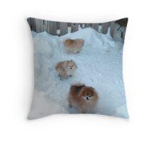 Poms Winter Playground Throw Pillow