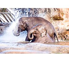 Elephant shower Photographic Print