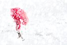 Red Umbrella by Andrew Bret Wallis