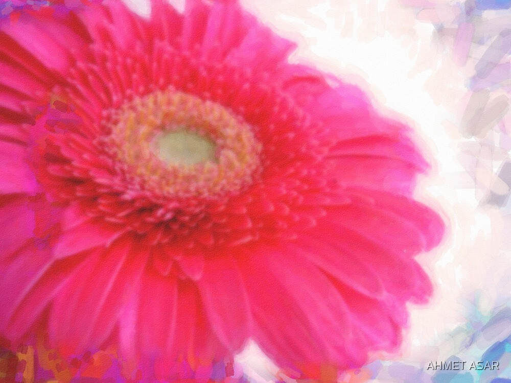 pink spring in watercolor by MotionAge Media