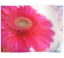 pink spring in watercolor Poster
