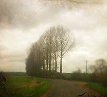 Memory Lane ii by Nicola Smith