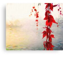 Red wines climbing Canvas Print