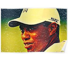 tiger woods 2 crayons Poster