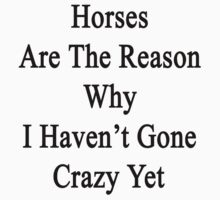 Horses Are The Reason Why I Haven't Gone Crazy Yet by supernova23