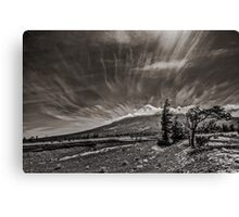 Southern Argentina Canvas Print
