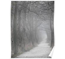 Path in the Fog Poster